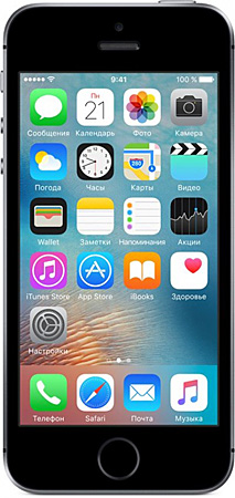 iPhone SE ремонт